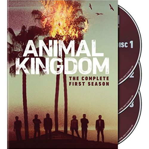 Animal Kingdom Season 1 DVD Wholesale