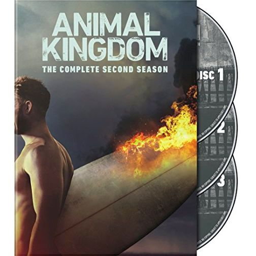 Animal Kingdom Season 2 DVD Wholesale