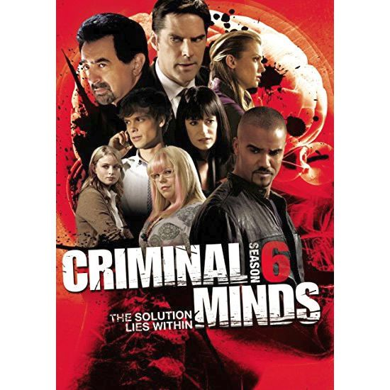Criminal Minds Season 6 DVD Wholesale