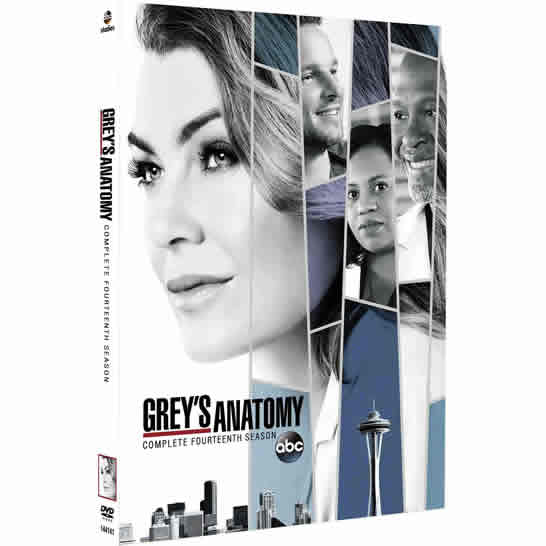 Grey's Anatomy Season 14 DVD Wholesale