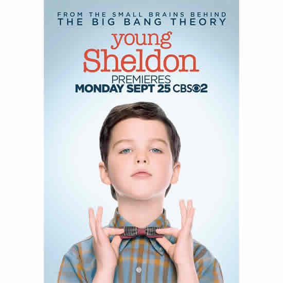 Young Sheldon Season 1 DVD Wholesale