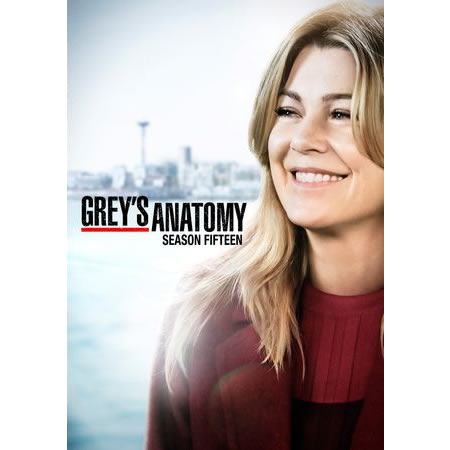 Grey's Anatomy Season 15 DVD